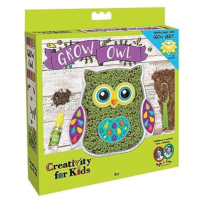 Creativity for Kids Grow Owl Kit - Garden Kit for Kids: Toys & Games