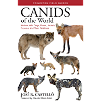 Canids of the World: Wolves, Wild Dogs, Foxes, Jackals, Coyotes, and Their Relatives (Princeton Field Guides) (English Edition)