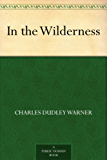 In the Wilderness (English Edition)