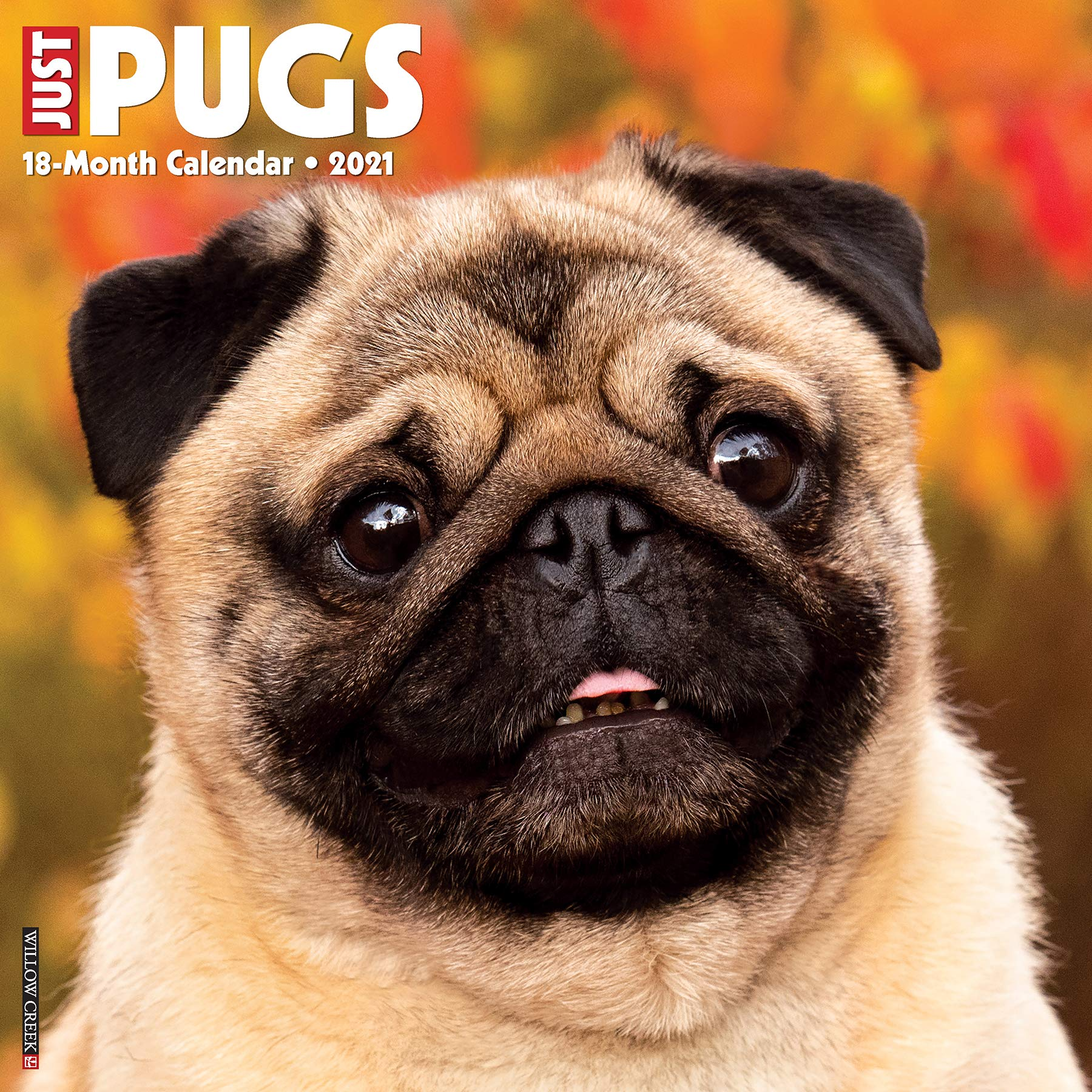 Just Pugs 2021 Wall Calendar (Dog Breed Calendar): Willow Creek