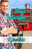 Amish Indiscretion
