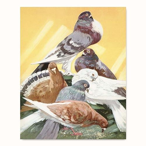Amazon.com: Dove Print (Yellow Wall Art, Bird Nursery Decor, Pigeon ...
