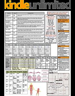 Nursing Cheat Sheets: 76 Cheat Sheets for Nursing Students