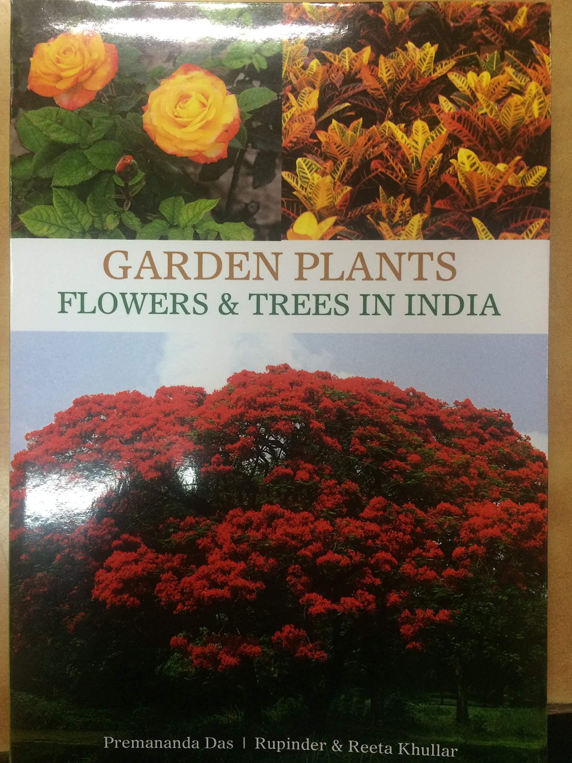 Amazon Buy Garden Plants Flowers Trees In India Book Online At