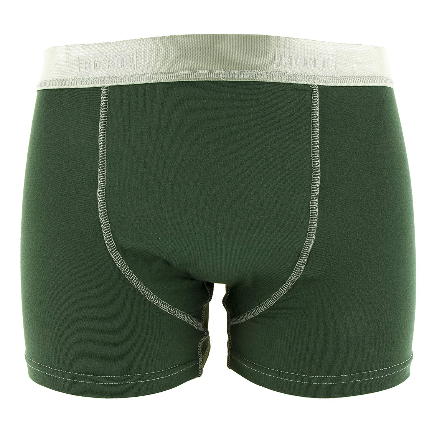 XS KICKEE Mens Solid Boxer Brief in Topiary with Aloe
