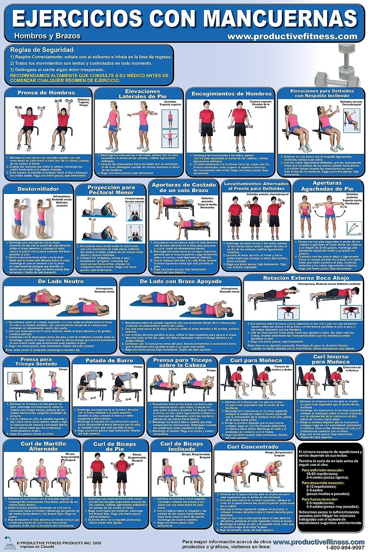 Amazon.com : Ejercicios con Mancuernas #1. - Hombros y Brazos y #2. Centro / Espalda / Pecho y Parte Inferior del Cuerpo - Dumbbell Training Poster/Chart ...
