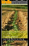 La strega moderna e le erbe: Primi passi (Paganesimo e Magia Moderna Vol. 1)