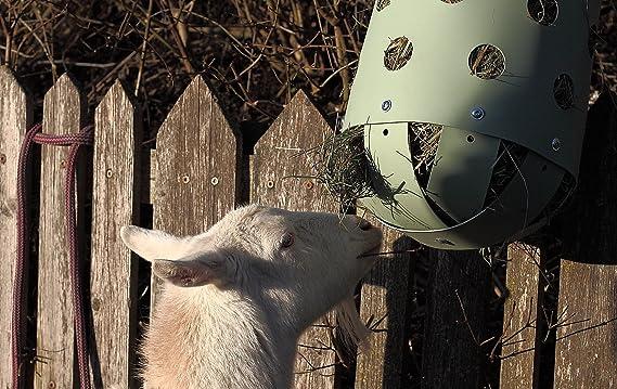 Heutoy Mini bausatz für Esel, Ziege, Schafe, Kleine Ponys Statt Heuraufe GroßEs Sortiment