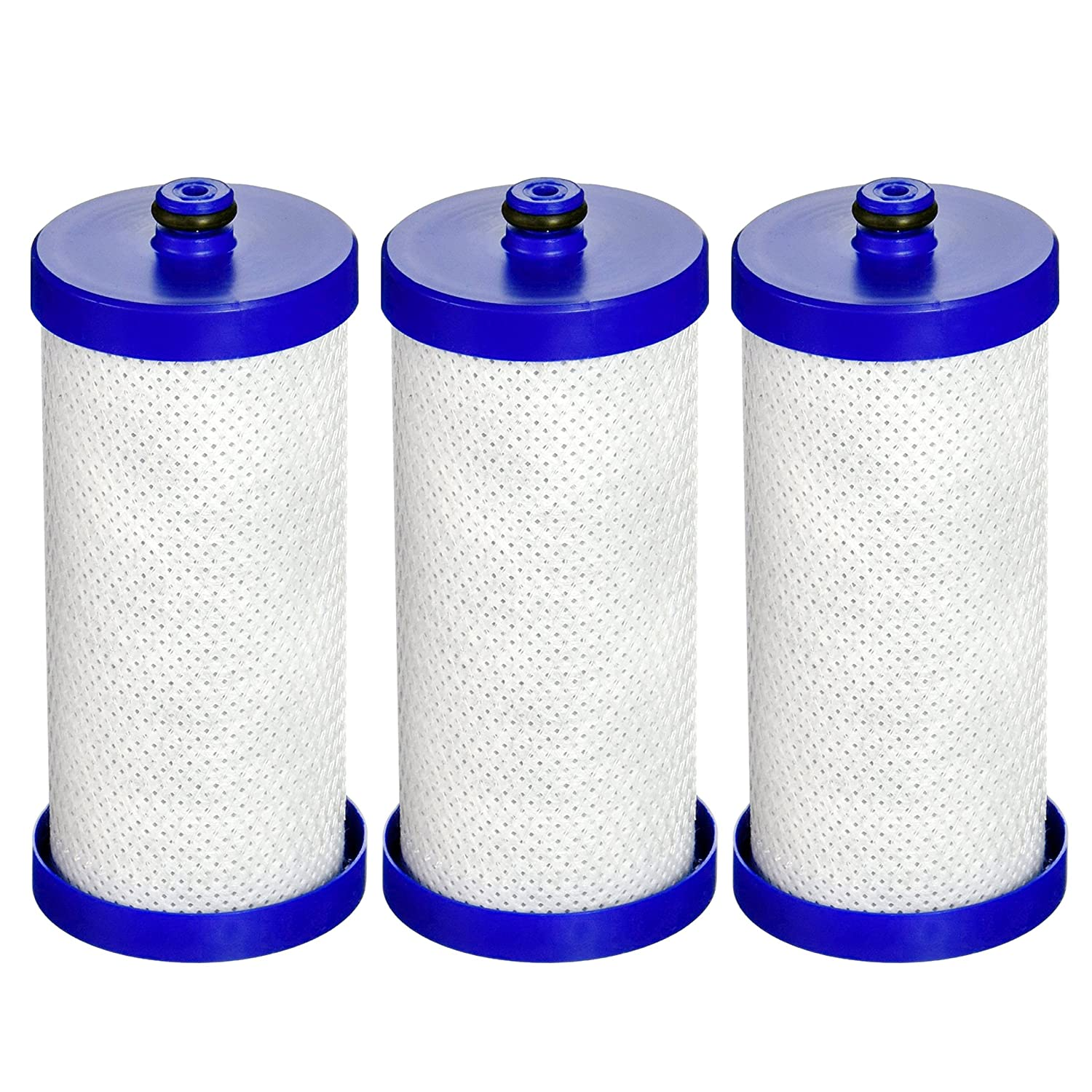 EcoAqua WF1CB-EFF Replacement Filter, Compatible with WF1CB, WFCB, RG100, NGRG2000, WF284, 9910, 469906, 469910, 3 Pack