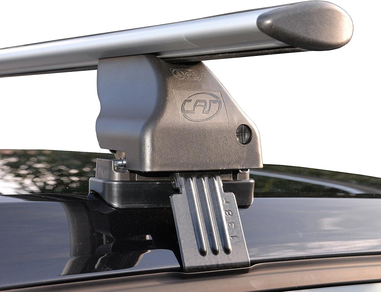 Cam 2825 Totus Fly Stangen 112 Cm Auto