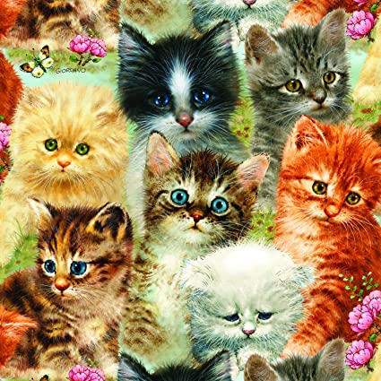 A Pile Of Kittens 1000 Piece Jigsaw Puzzle By Sunsout Inc
