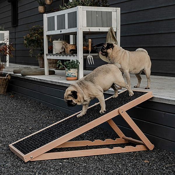 Hunde-Rampen