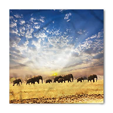 Amazon.com: lunarable Safari Bandana, Wild animales ...