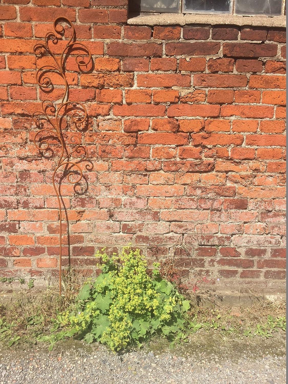 Rankhilfe Floral Rankstab Rankgerüst Eisen Rost Deko 160 cm