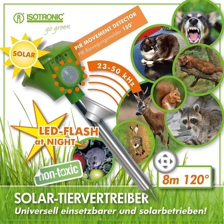 ISOTRONIC Ahuyentador ultrasonidos solar para animales gatos perros palomas pájaros lirones conejos corzos jabalíes zorros Set de 2: Amazon.es: Jardín