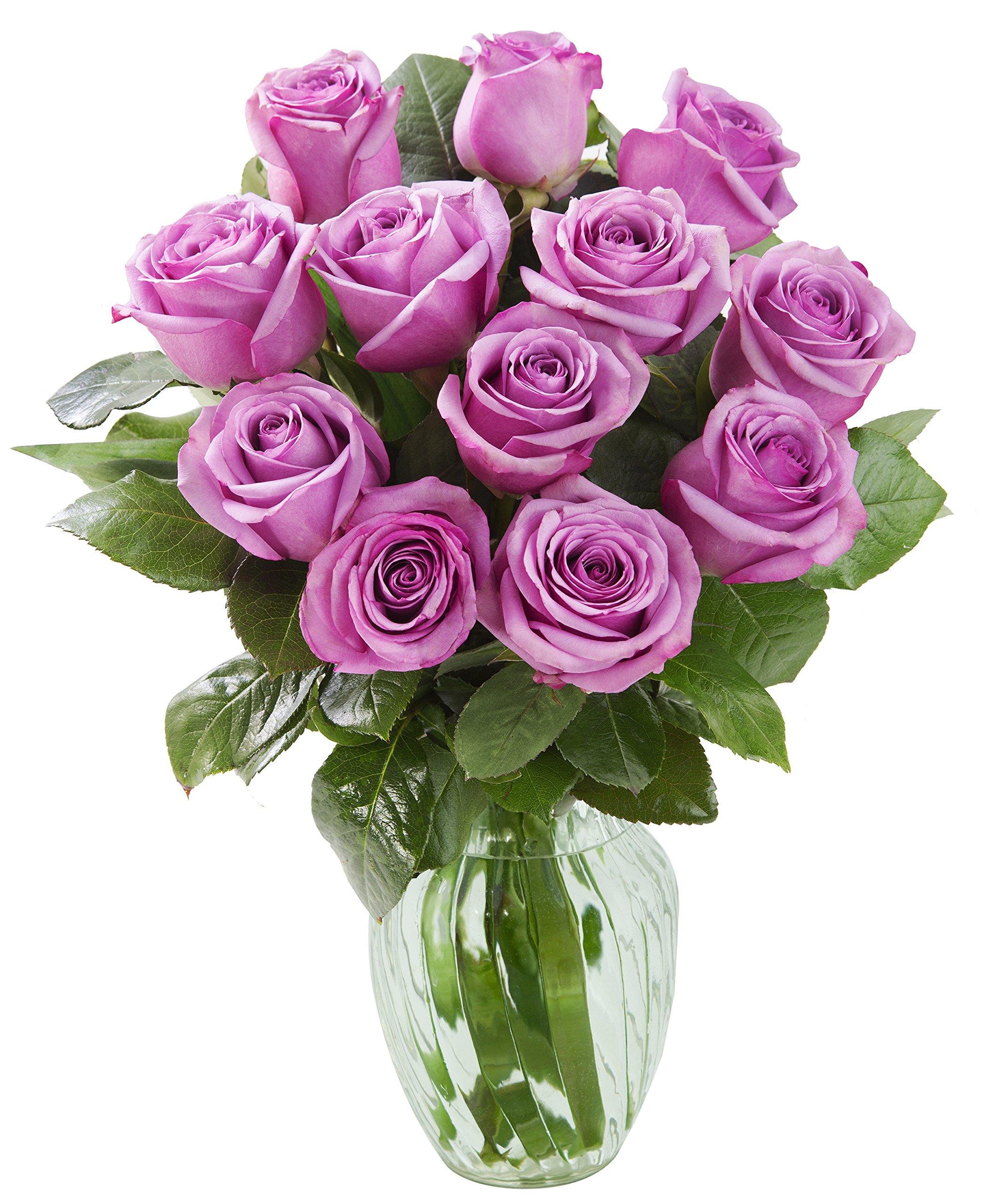 KaBloom Bouquet of 12 Fresh Purple Roses (Farm-Fresh, Long-Stem) with Vase by KaBloom