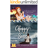 Choppy Seas (A Rowan Gray Mystery Book 5)