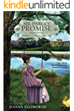 Mr. Darcy's Promise, Second Edition