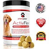 ActivFlex, Best Glucosamine for Dogs, Safe Arthritis Pain Relief, All Natural Hip & Joint Supplement for Dogs, Improves Hip Dysplasia, Chondroitin, Turmeric, MSM for Dogs, Joint Support 120 Soft Chews