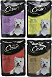Cesar Dog Food Senior Deliciously Fresh Selection in Jelly 8 x100g, Pack of 6,48 pouches