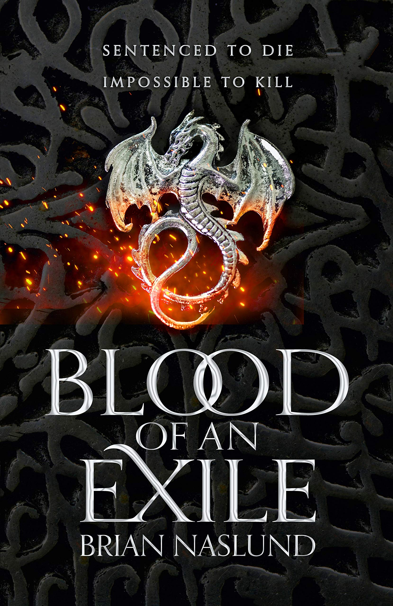 Blood of an Exile (Dragons of Terra): Amazon.co.uk: Naslund, Brian:  9781529016123: Books