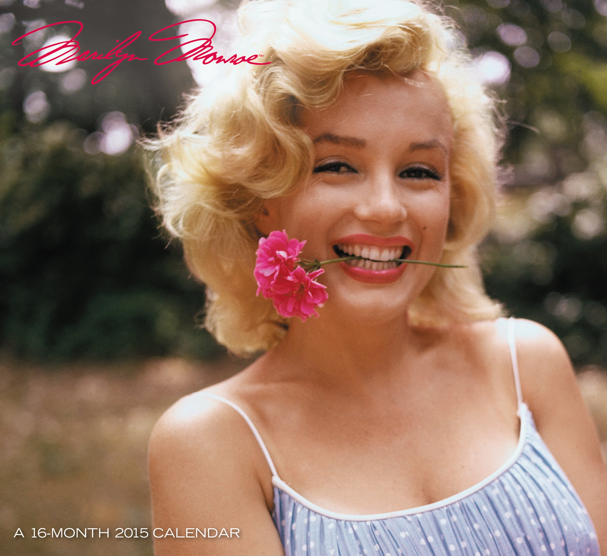 Marilyn Monroe Wall Calendar 2015 Mead 9781423826361 Amazon Com