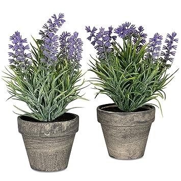 2er Set Lavendel Im Topf 21cm Kunstblume Violett Kunstpflanze Deko