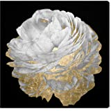 """Aerial View Black, White and Gold Floral Canvas Print, 24"""" x 24"""""""