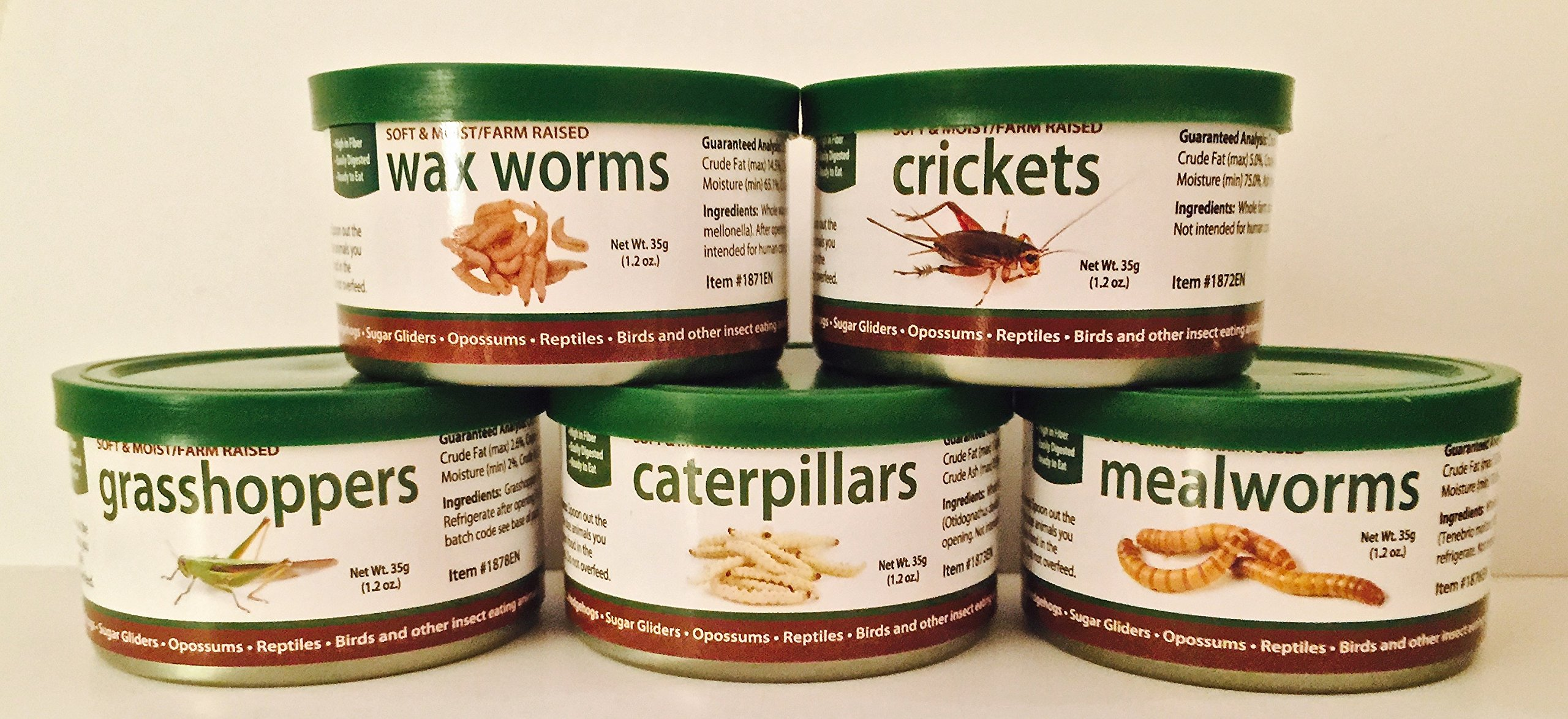 SUGAR GLIDERS USA 5 PACK CANNED INSECTS: CATERPILLARS, MEALWORMS, WAX WORMS, CRICKETS, GRASSHOPPERS