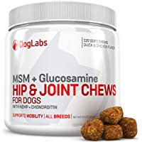MSM Hip & Joint Chews for Dogs with Hemp, Glucosamine + Chondroitin - Supports Mobility - All Dog Breeds - 120 Chews for Dog Arthritis - Duck & Chicken Flavor - Premium Dog Supplements - Made in USA