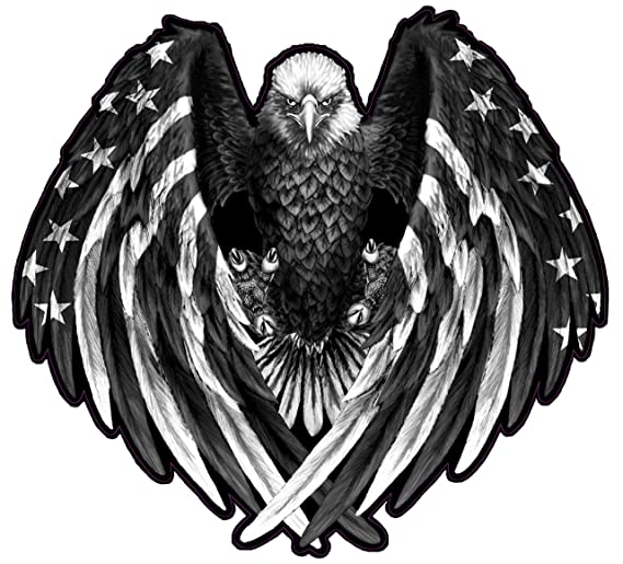 amazon nostalgia decals bald eagle american flag eagle wings Bird of Prey Bicycle amazon nostalgia decals bald eagle american flag eagle wings black white decal from the united states 36 x 36 automotive