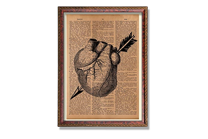 Amazon.com: Antique heart anatomy print with arrow Medical poster ...