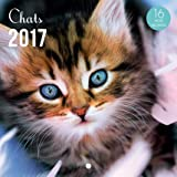 YVON Calendrier 2017 Chats 16 mois 14,5 x 14,5 cm