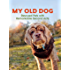 My Old Dog: Rescued Pets with Remarkable Second Acts