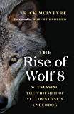 The Rise of Wolf 8: Witnessing the Triumph of Yellowstone's Underdog (The Alpha Wolves of Yellowstone Book 1)