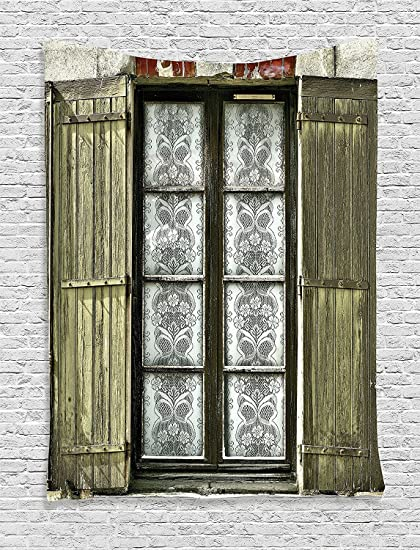 Ambesonne Shutters Decor Collection, European French Window With Antique  Open Shutter Print Vintage Style Home