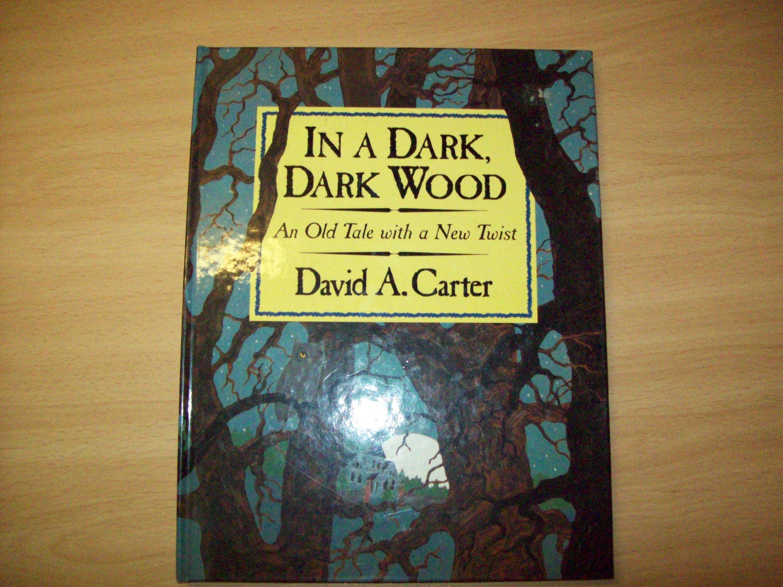 In a Dark, Dark Wood (Novelty book): David A. Carter ...