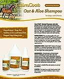 Calm Coat Oatmeal & Aloe Dog Cat & Horse Shampoo