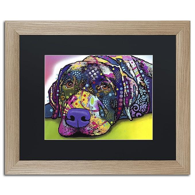 trademark fine art Savvy Labrador por Dean Russo en marco de abedul ...