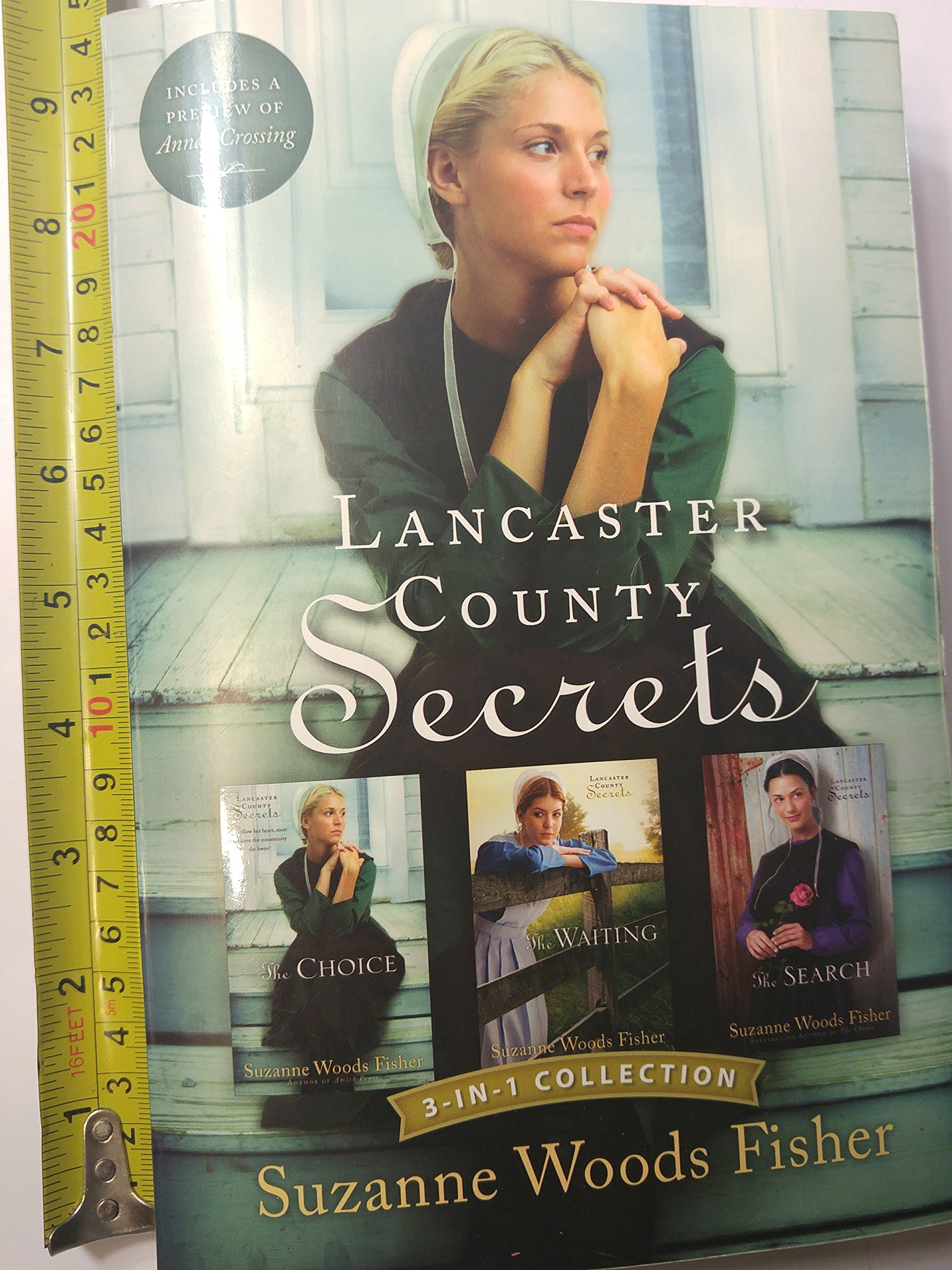Lancaster County Secrets 3-In-1 Collection: The Choice; the Waiting; the  Search: Suzanne Woods Fisher: 9780800769864: Amazon.com: Books