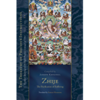 Zhije: The Pacification of Suffering: Essential Teachings of the Eight Practice Lineages of Tibet, Volume 13 (The Treasury of Precious Instructions)
