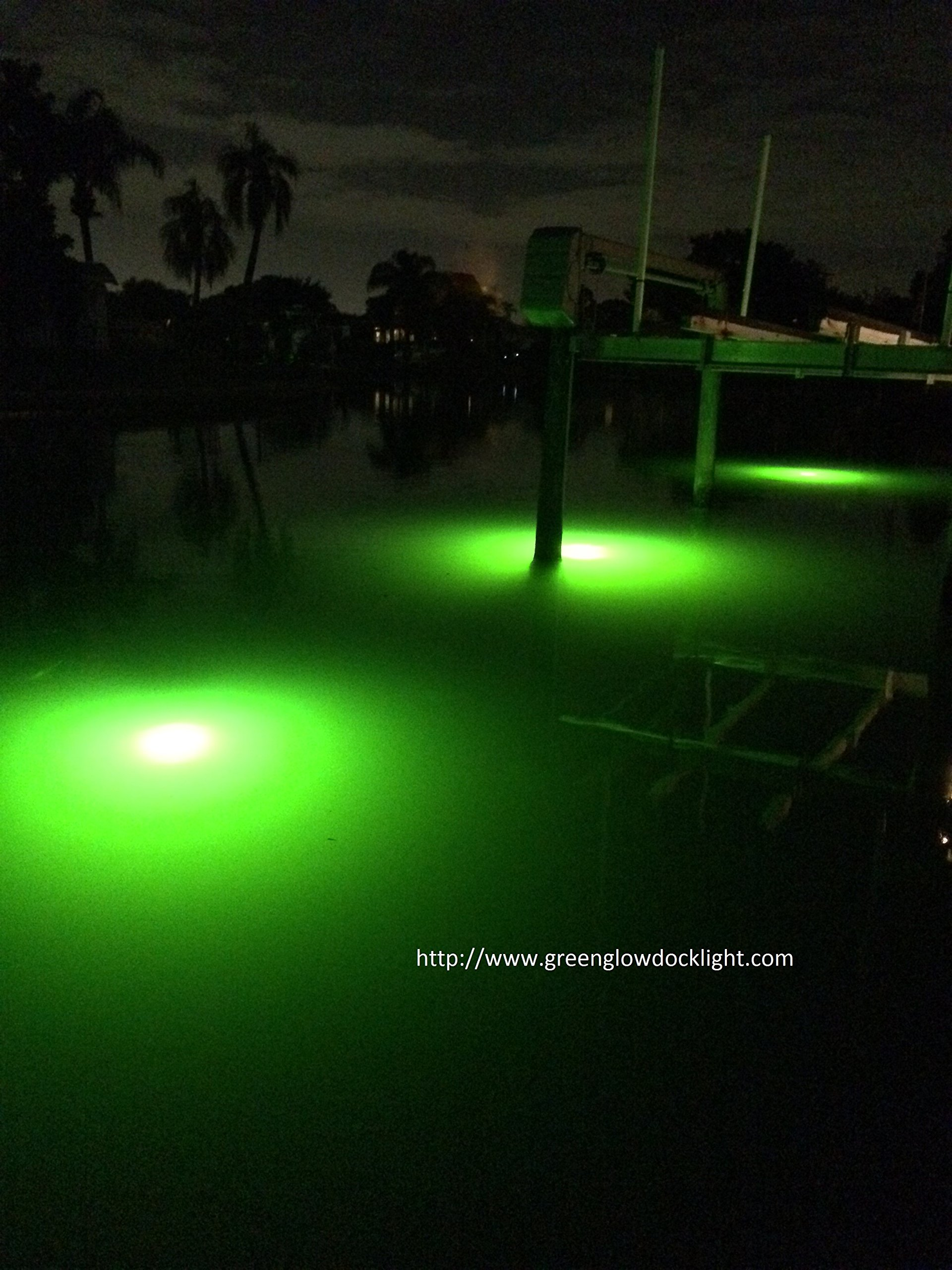 Bright Green Underwater Fishing Lights, Double Lamp Kit with 50' Cords Saltwater or Fresh by Green Glow Dock Light (Image #4)