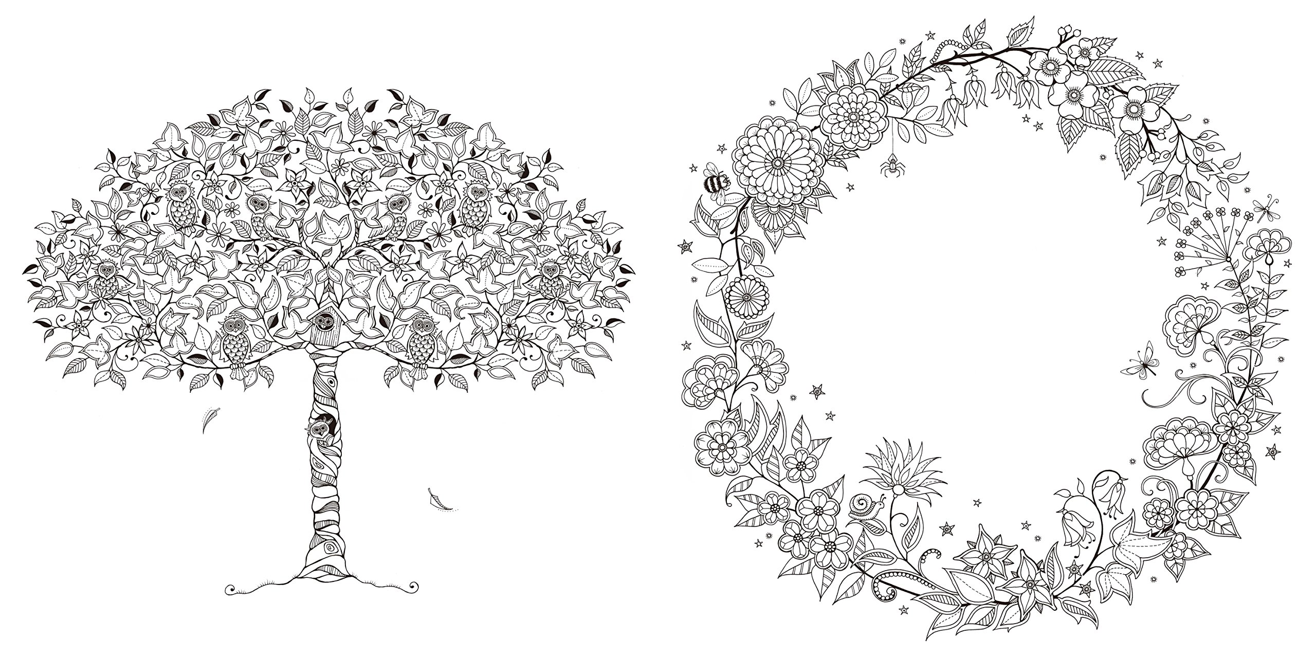 ひみつの花園 花いっぱいのぬりえブック ジョハンナバスフォード 本