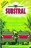 Fertiligène 3988 Bâtonnet Nutritif Plante Vert Lot de 40