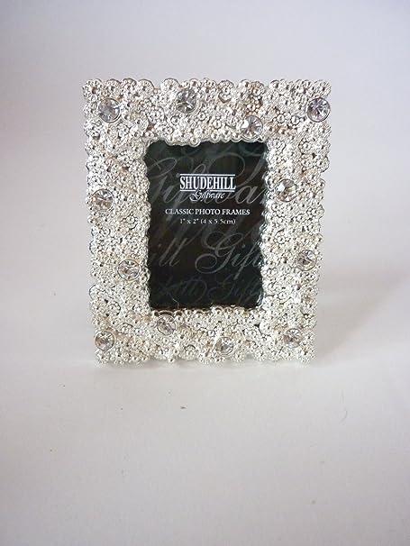 Stunning/Elegant/Decorative Polished Silver Coral Diamante Mini ...