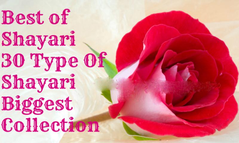 Amazon com: Romantic Lovebird Sayari SMS: Appstore for Android
