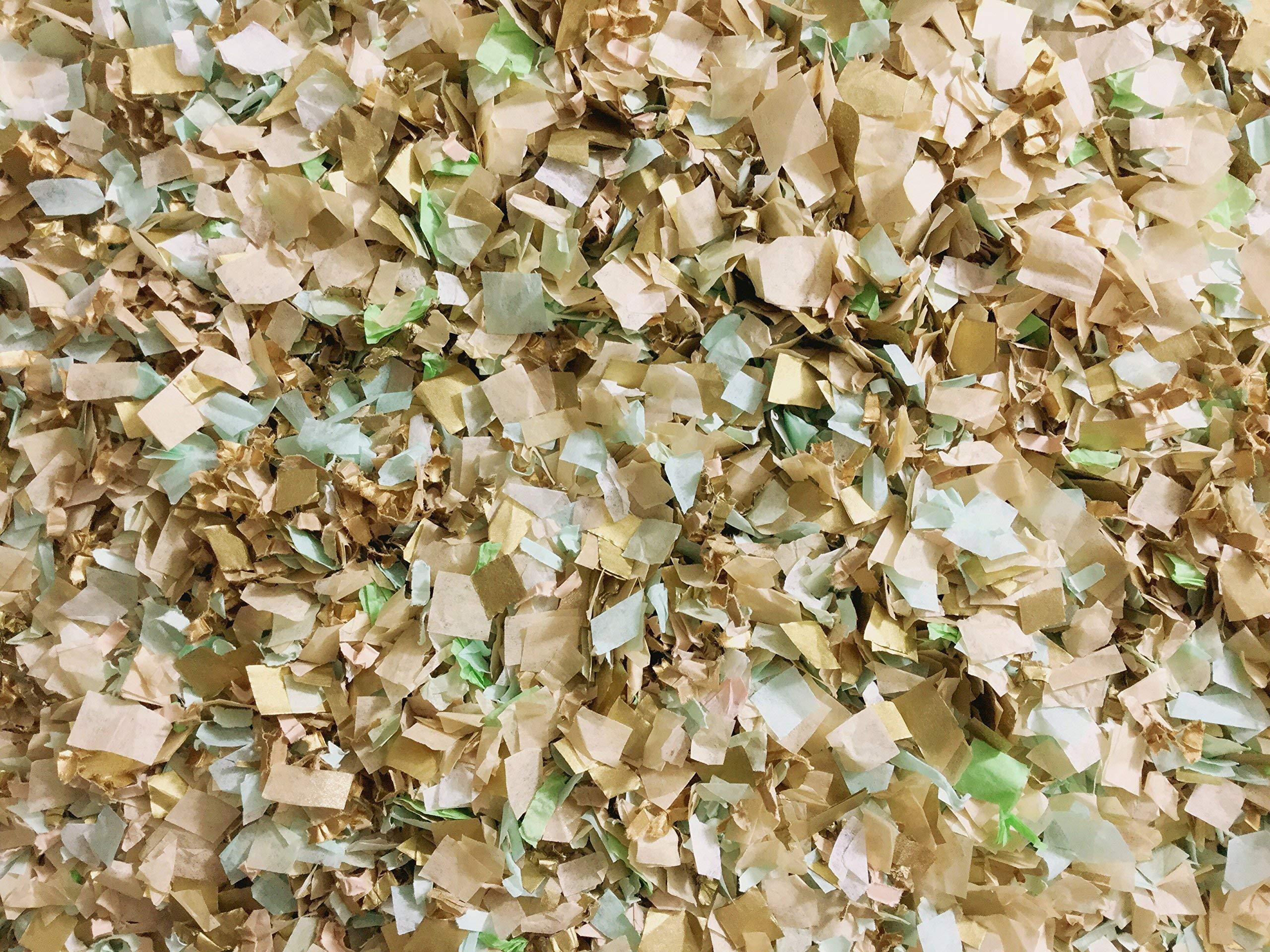 Mint Ivory Gold Biodegradable Confetti Mix Wedding Bridal Shower Party Decorations Bulk Wholesale Throwing Send Off Table Decor InsideMyNest (25 Handfuls)
