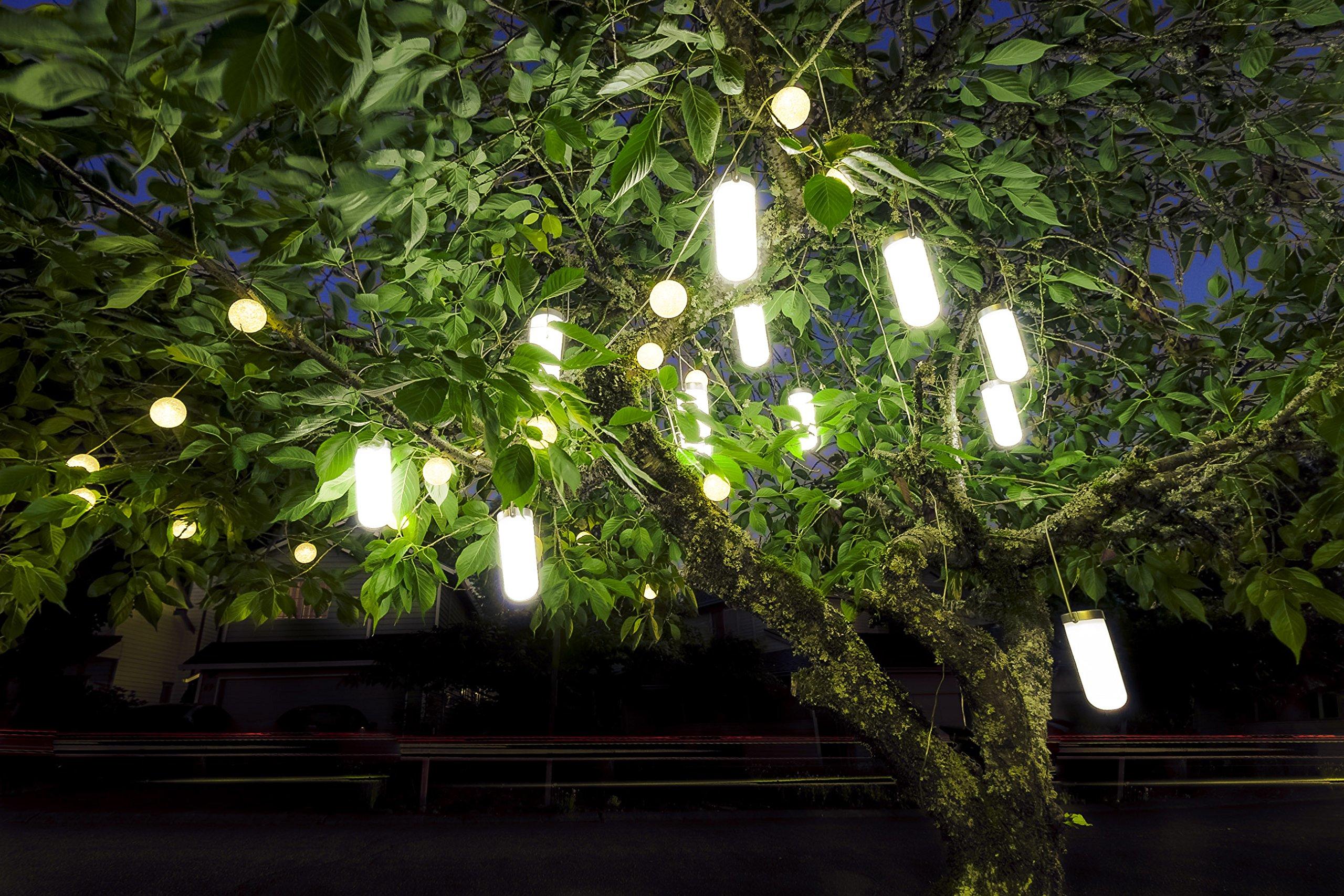 Hanging Solar Garden Tree Light - Waterproof Solar Lights, Solar Tree Lighting - SET OF TWO (2) Lights
