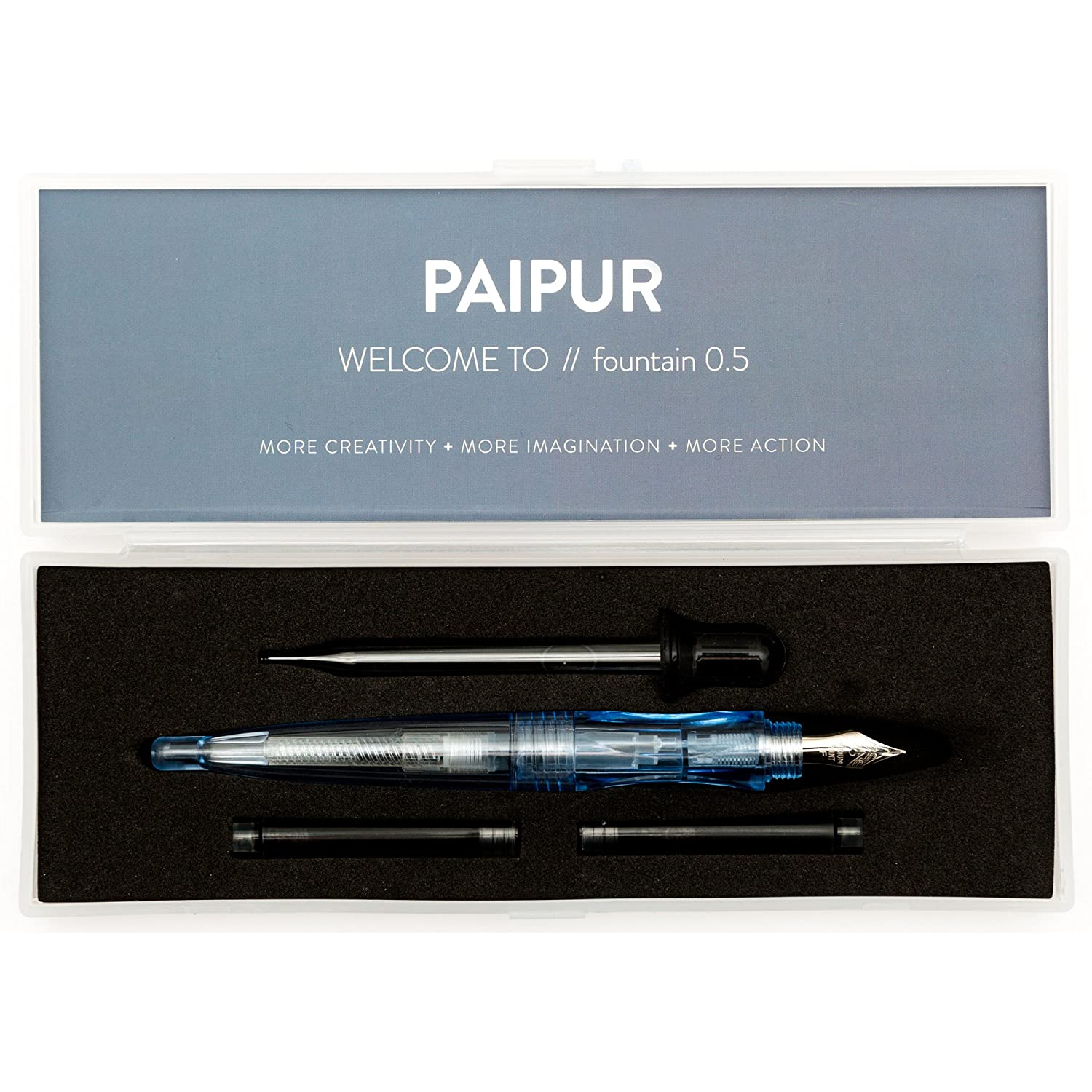 Fountain Pen by PAIPUR - Stainless Steel 0.5mm Medium NIB - Best for Smooth Flowing Writing - with 2 Cartridges, Ink Converter and Ink Dropper - Stylish Transparent Design in Gift Presentation Box