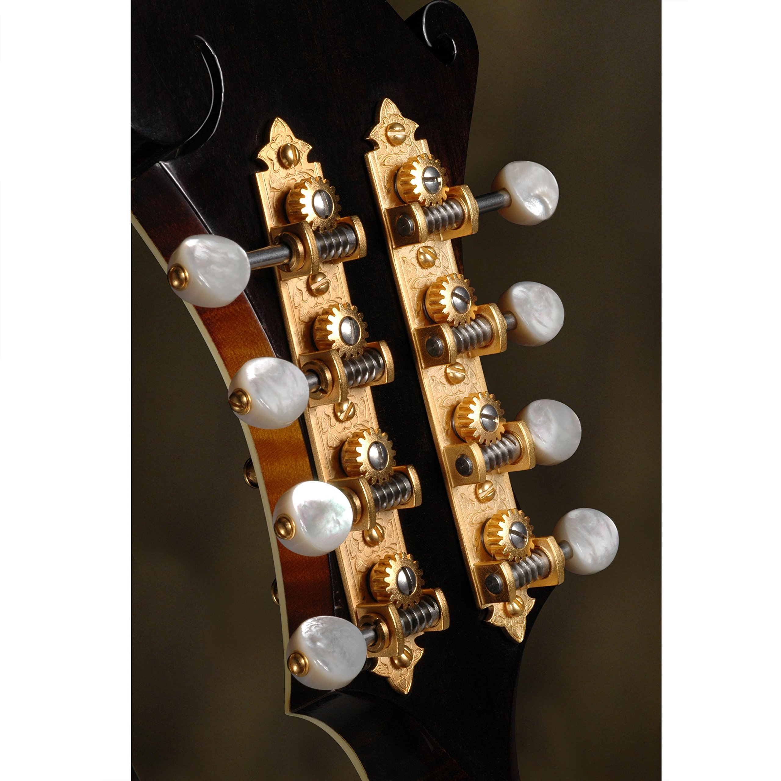 Waverly F-style Mandolin Tuning Machines with Pearl Knobs, Satin Gold